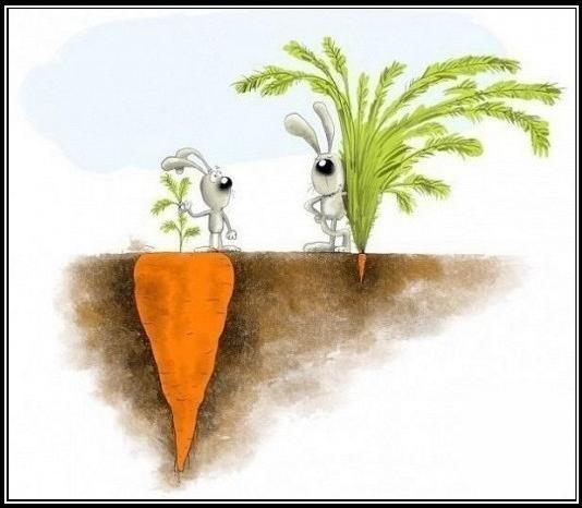 Psicología del Éxito - La clave del éxito 4 (por Mario Luna)