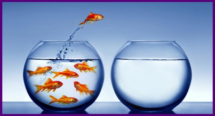 Psicología del Éxito - La clave del éxito (por Mario Luna)
