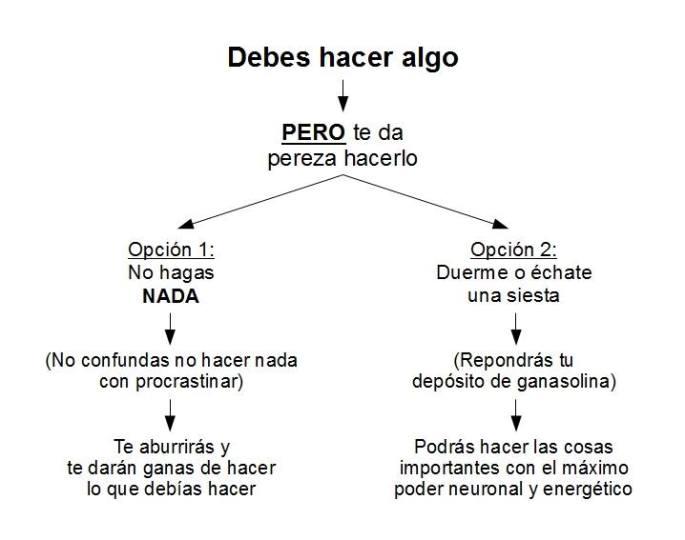 Psicología del Éxito - Vencer la pereza, por Mario Luna y Ariel Lombardi 02